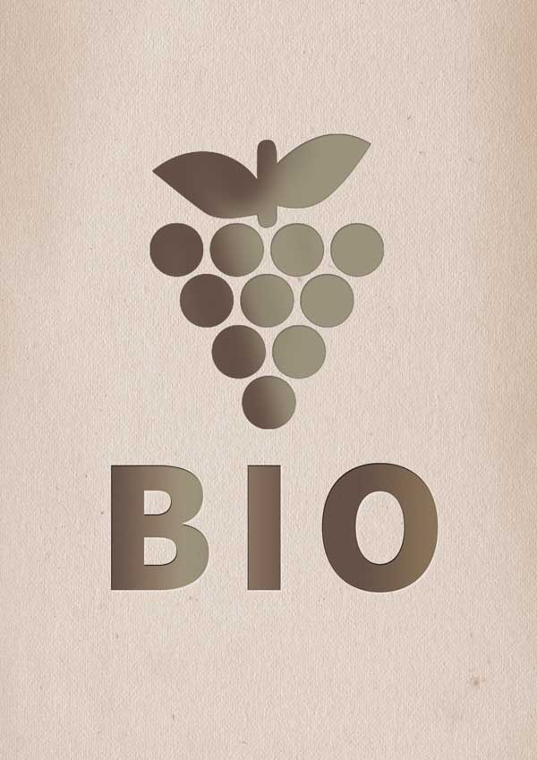 Organic wines: what is it and why you should consider them