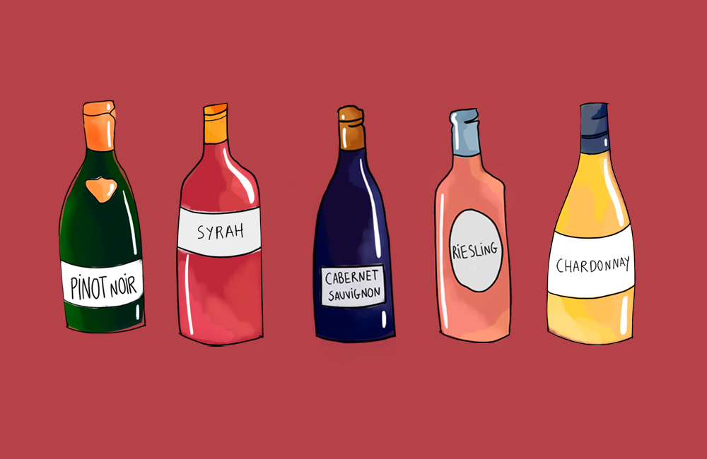 Wine for beginners: How to begin your love for wine
